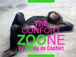 Saliendo de la zona de confort administrativa